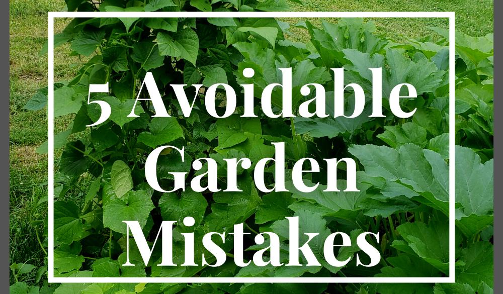 5 Avoidable Garden Mistakes